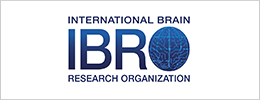 National Brain Research Organization (IBRO)